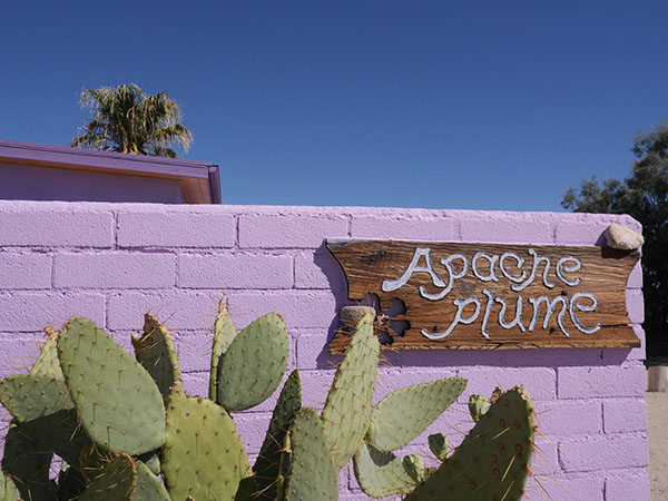 Welcome to the Apache Plume Adobe