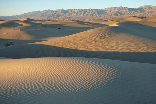 Late Afternoon light at the Mesquite Sand Dunes Death Valley NPS Photo